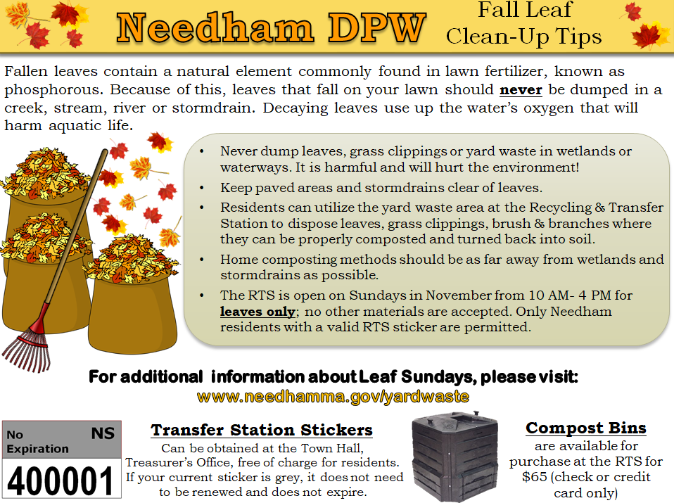 Fall Leaf Clean-Up Tips Opens in new window