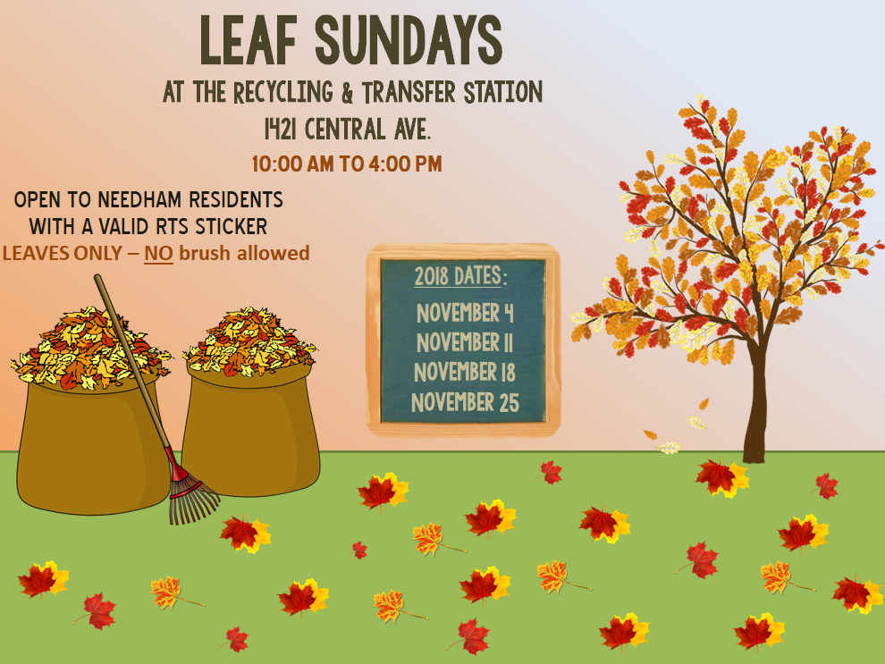 Leaf Sunday Schedule.PNG